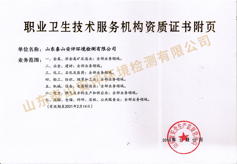 泰山安评职业卫生乙级资质附页